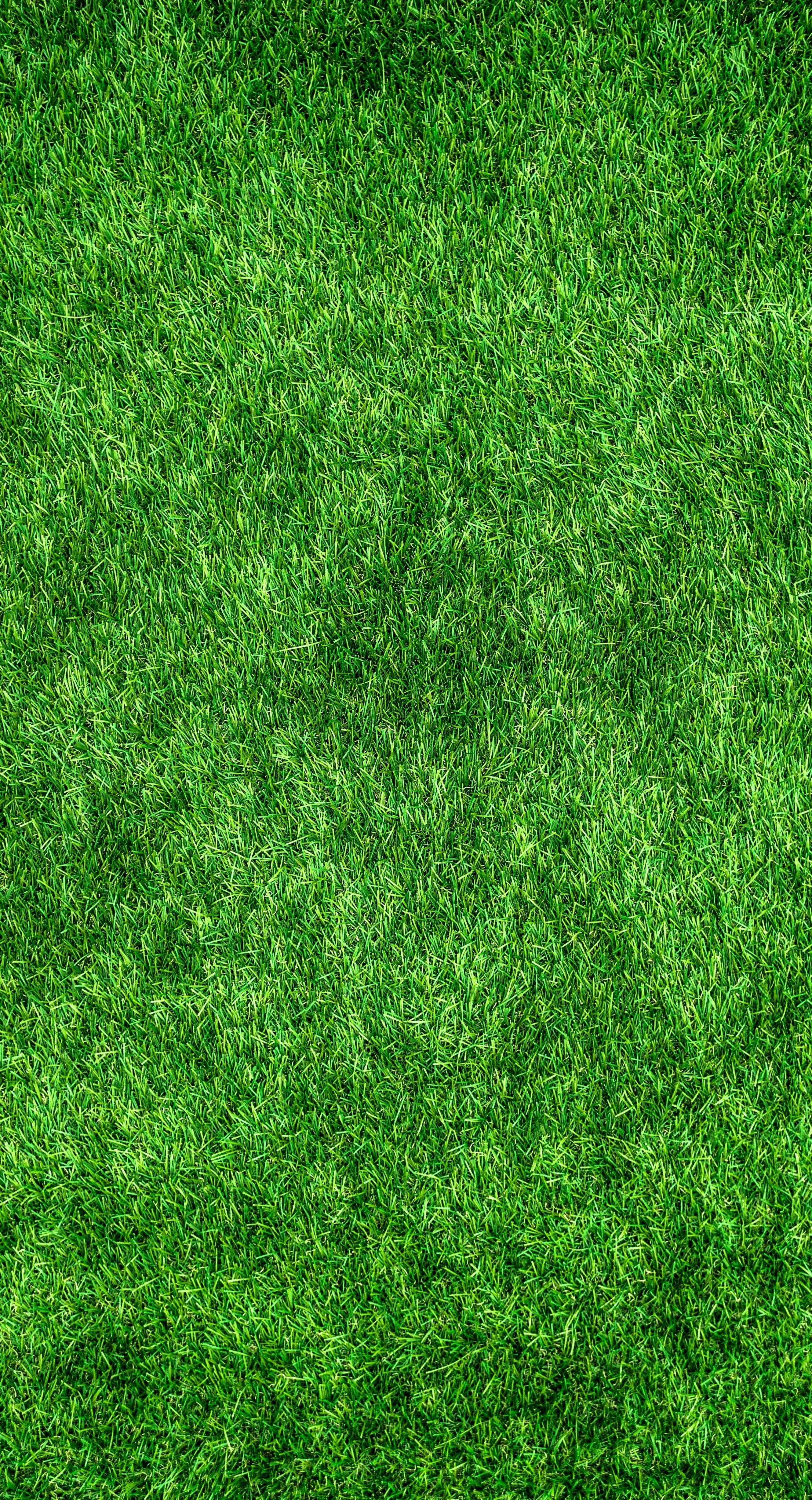 Free stock photo of abstract artificial turf background