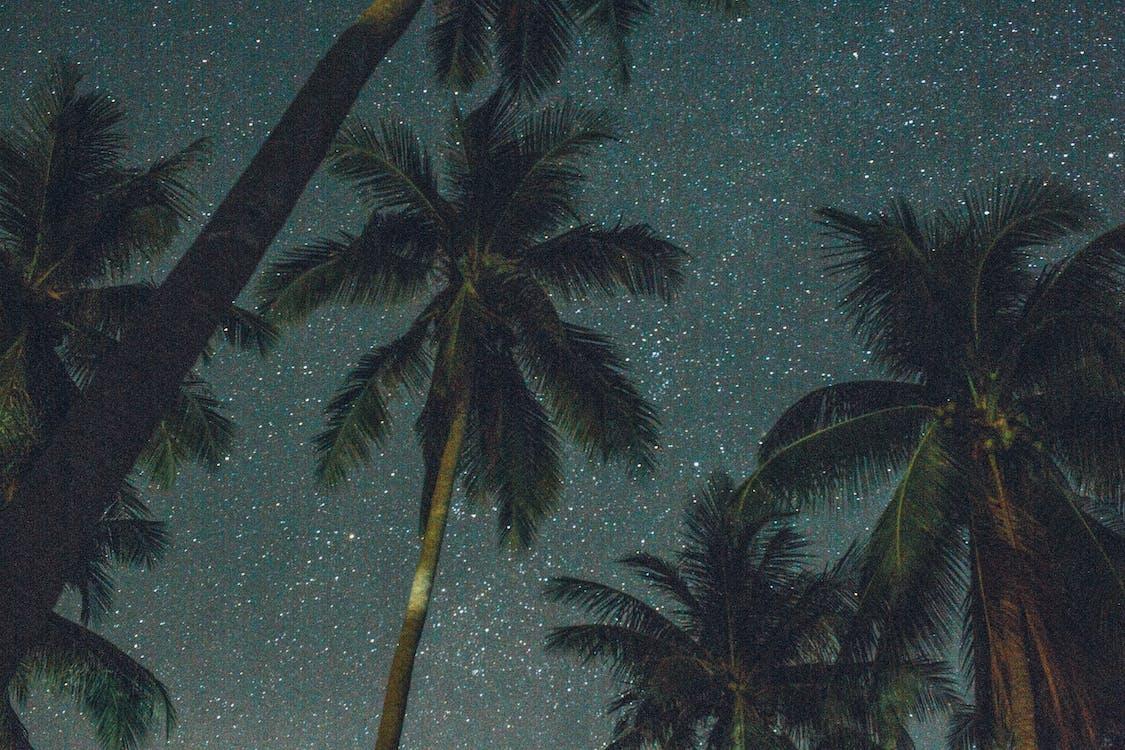 การถ่ายภาพมุมต่ำ, กาแล็กซี, งดงาม