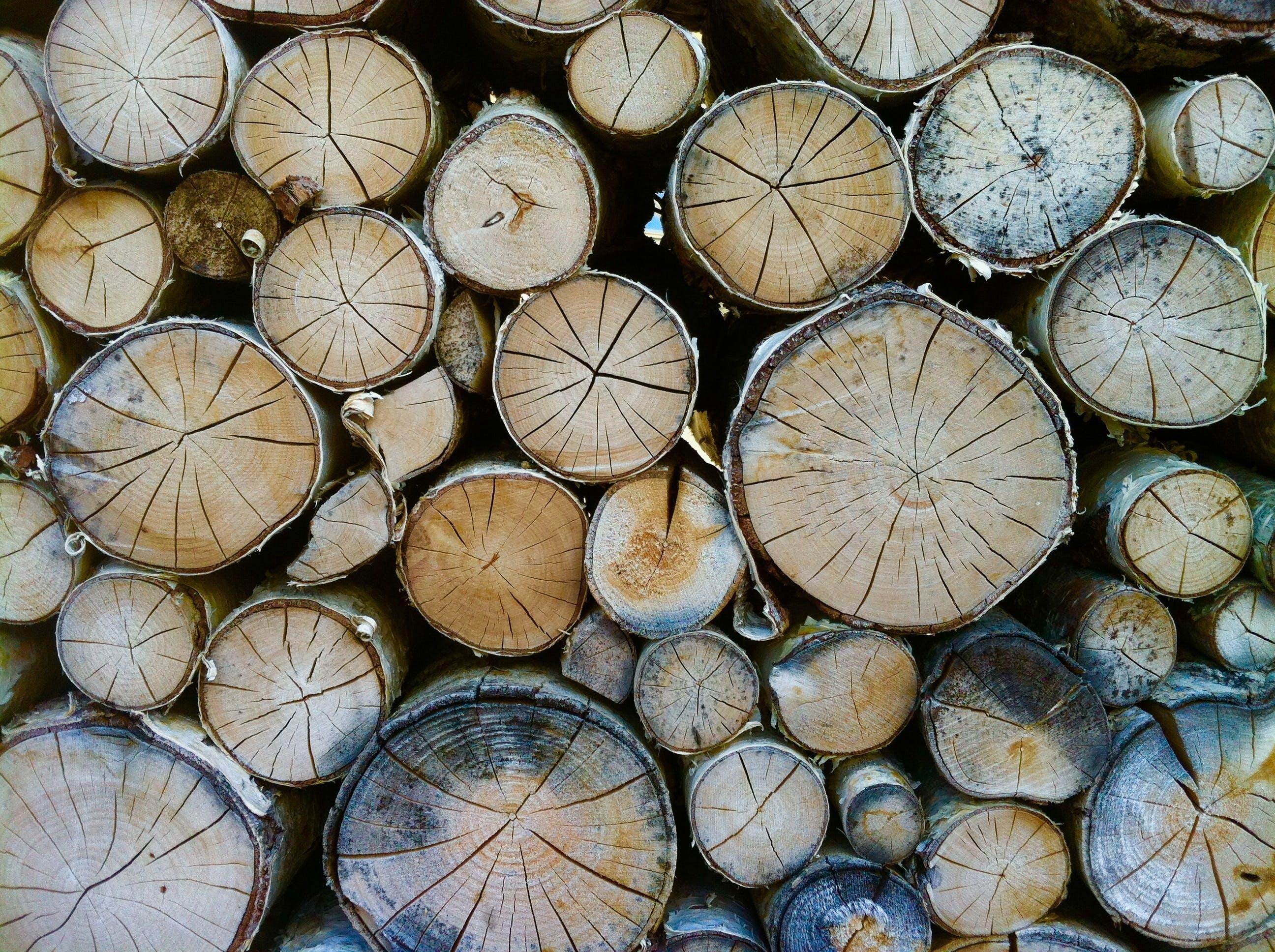 Pile of Brown Logs