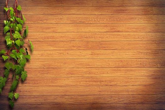 1000 engaging wooden flooring photos pexels free stock photos
