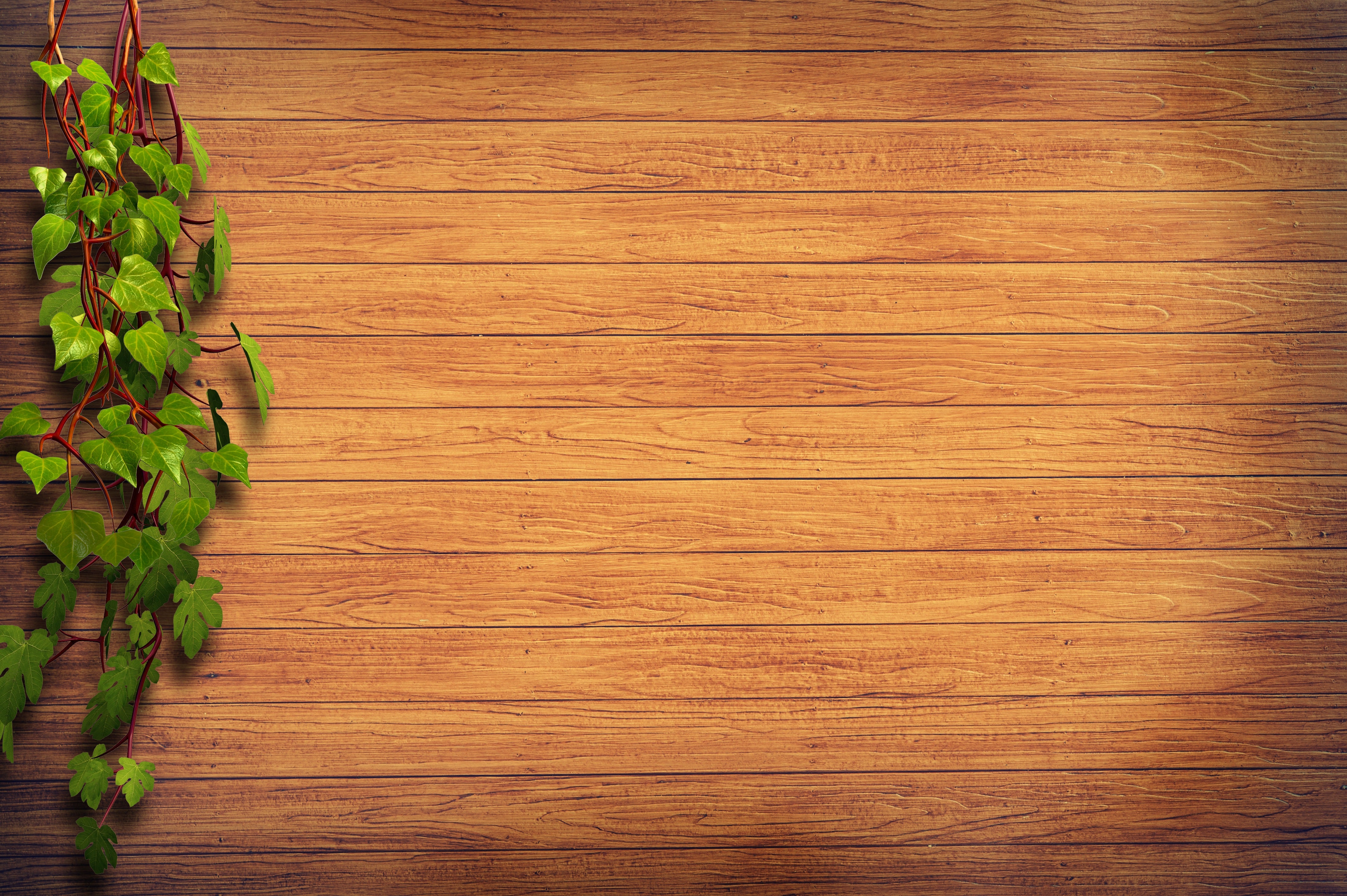 Brown Wooden Surface Beside Green Plant