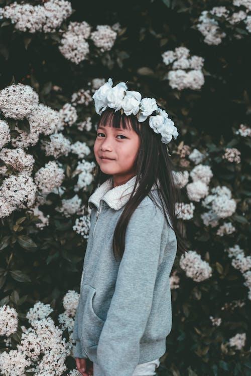 คลังภาพถ่ายฟรี ของ การจัดดอกไม้, กำลังบาน, คน, ดอกไม้