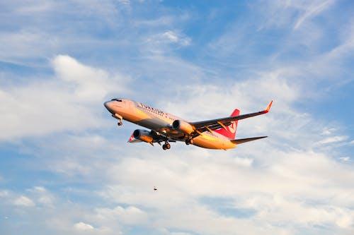 イスタンブール, トルコ航空, フライト, 出発の無料の写真素材