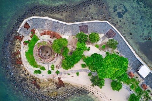 Foto d'estoc gratuïta de aeri, aigua, arbres, arquitectura