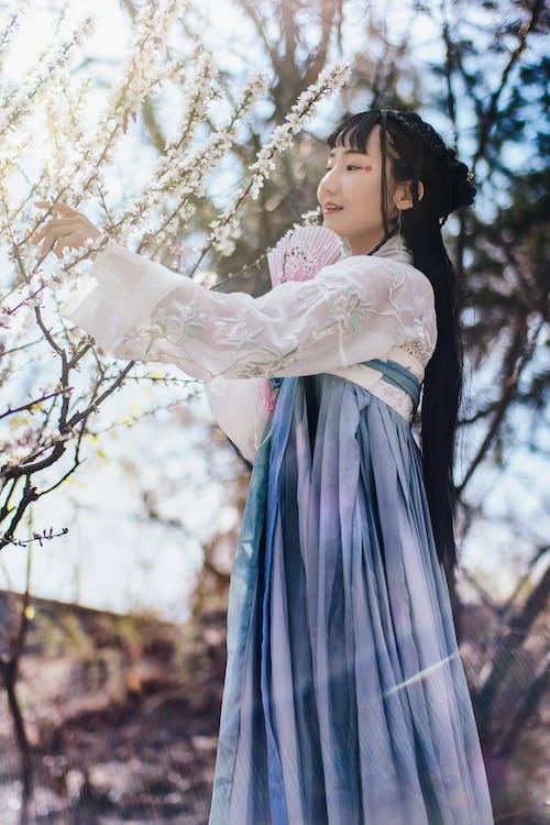Imagine de stoc gratuită din arbore, femeie, femeie asiatică, frumos