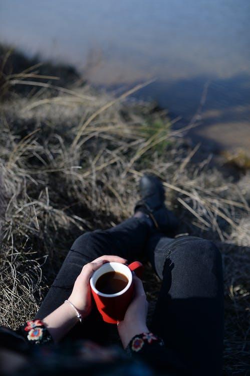 술을 마시다, 음료, 잔디
