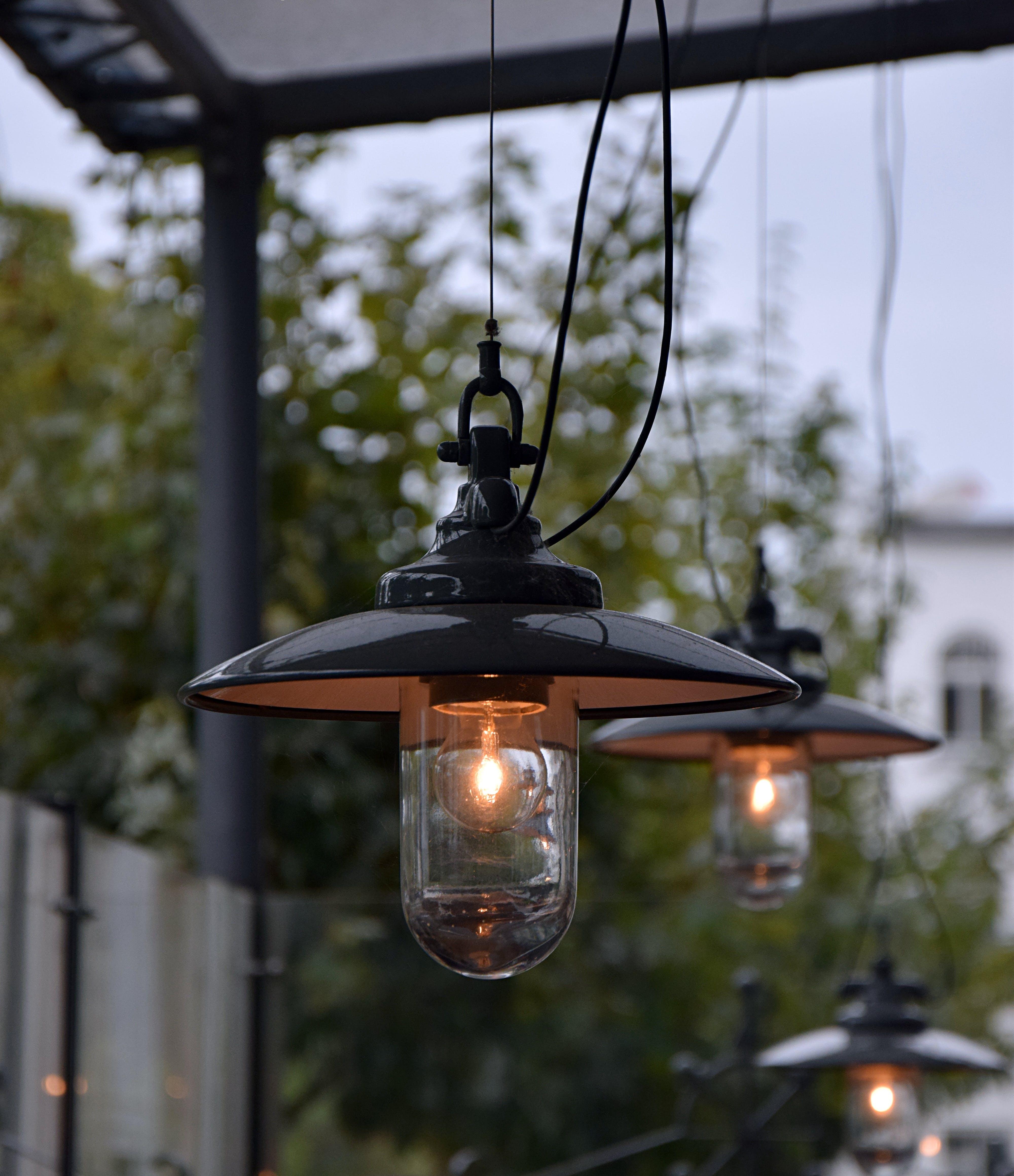 Close-up Black Pendant Lamp Near Trees