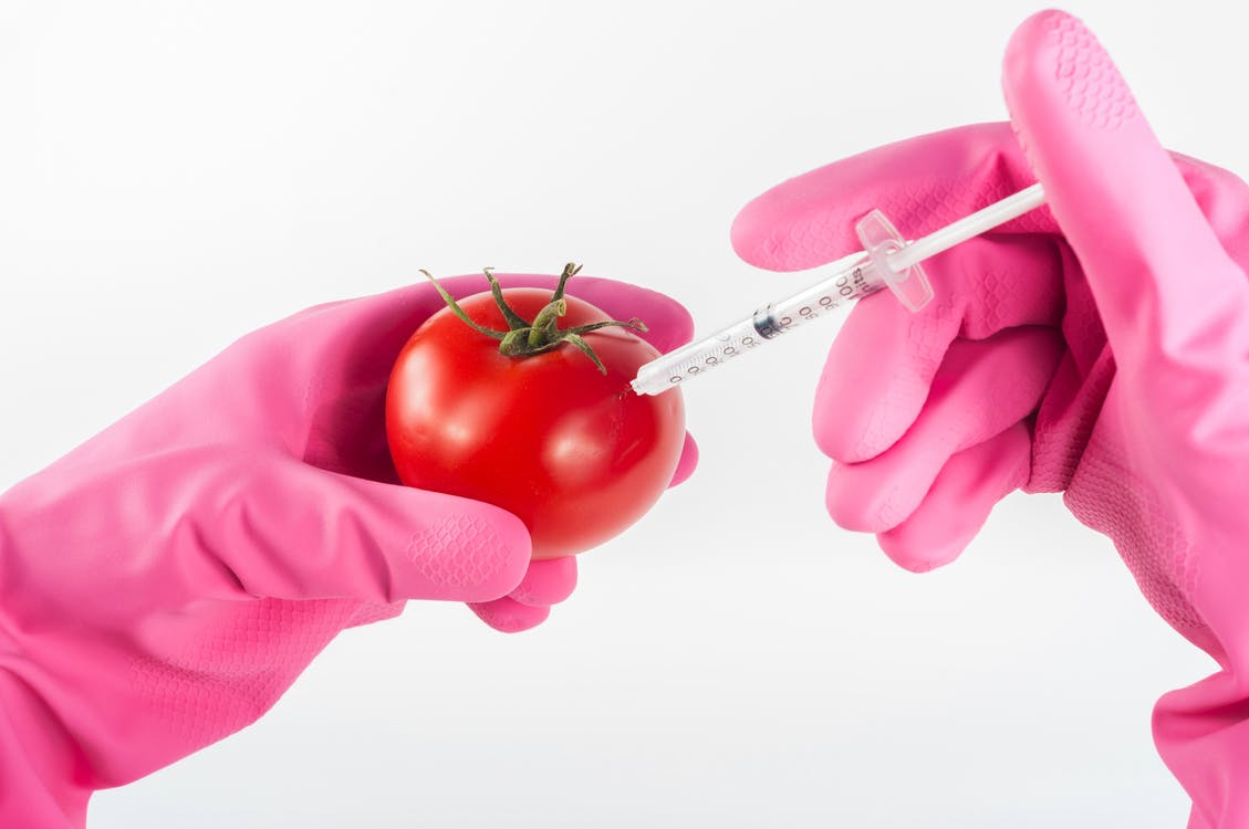 Person Injection Red Tomato