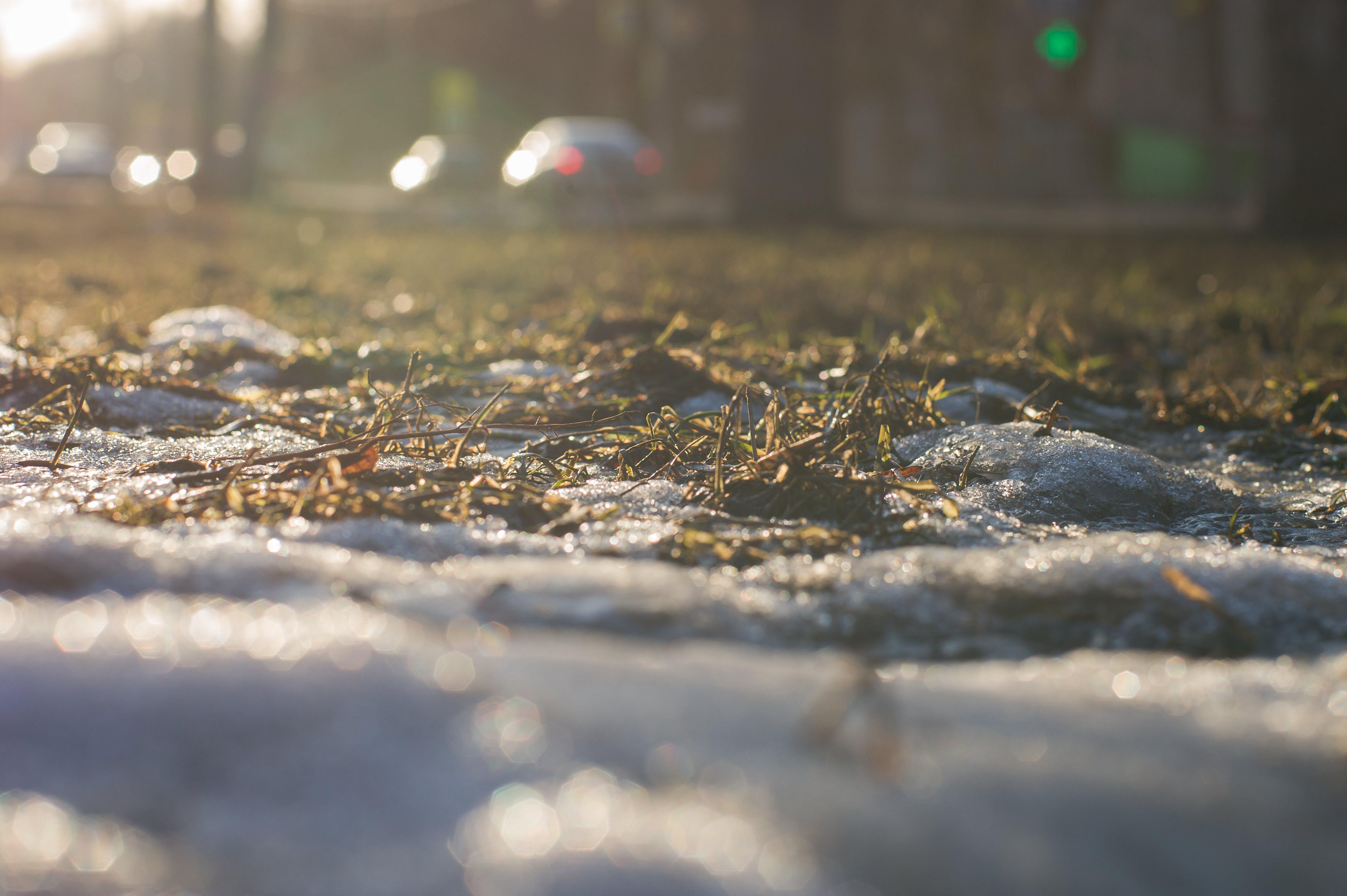 Free stock photo of city, light, snow, sun