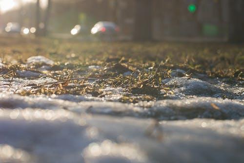 Foto stok gratis cahaya, kota, matahari, salju