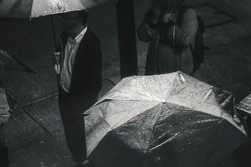 おとこ, アダルト, 傘, 天気の無料の写真素材