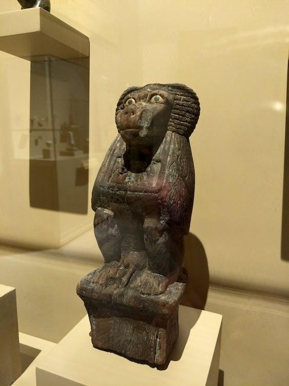 Afrika, arkeologi, babon
