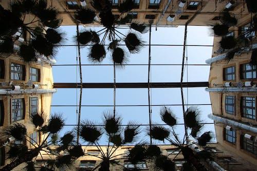 verre, vitre, 론 드, 마르세이유의 무료 스톡 사진