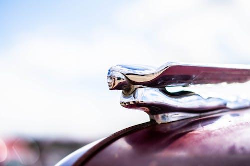 Free stock photo of antique, car, hood ornament, nash