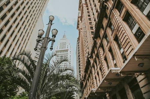 低角度拍攝, 城市, 塔, 外觀 的 免費圖庫相片