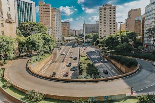 Foto profissional grátis de arquitetura, arranha-céus, árvores, automóveis
