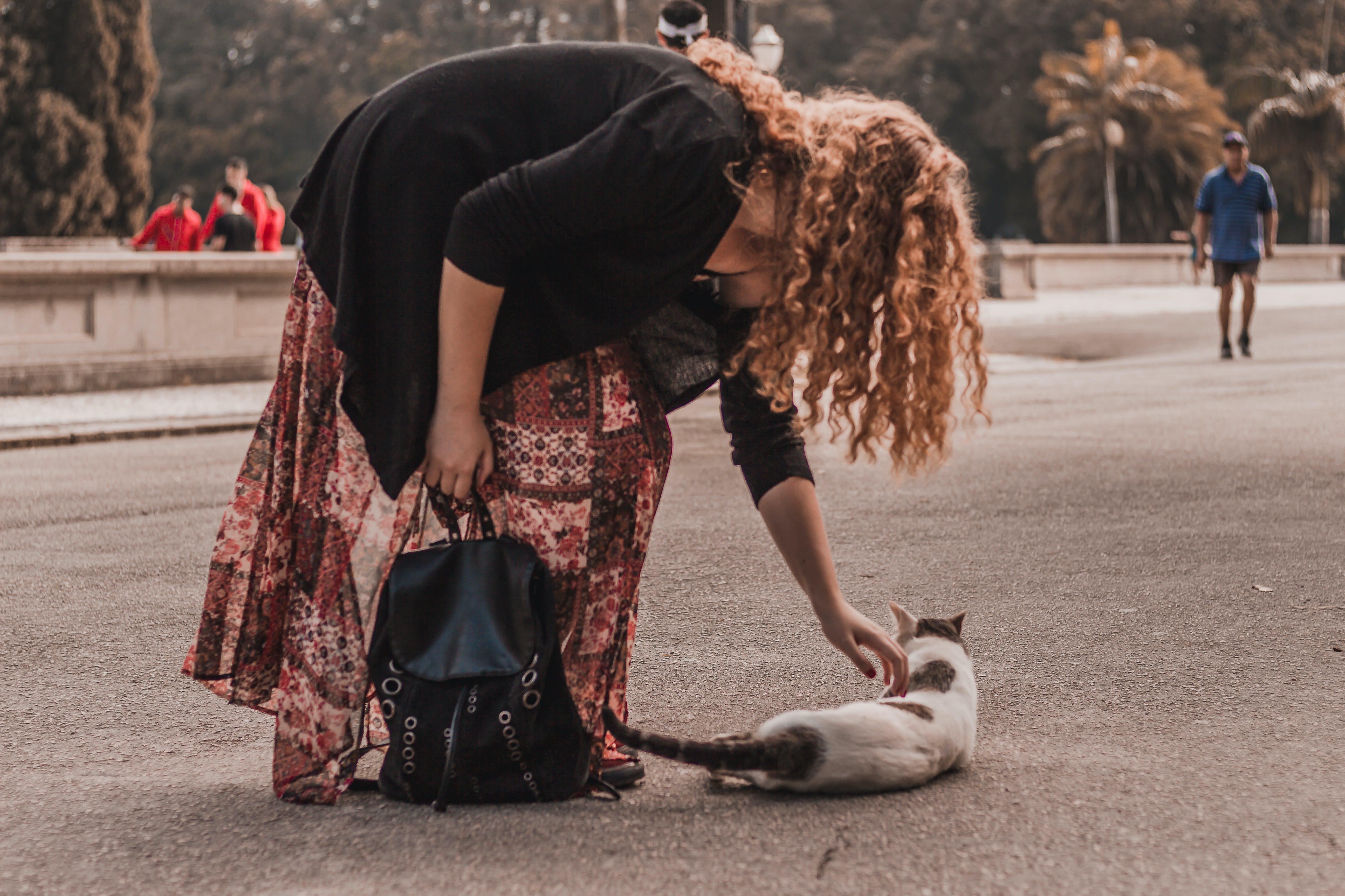 คลังภาพถ่ายฟรี ของ กลางวัน, การพักผ่อนหย่อนใจ, คน, คนรักสัตว์เลี้ยง