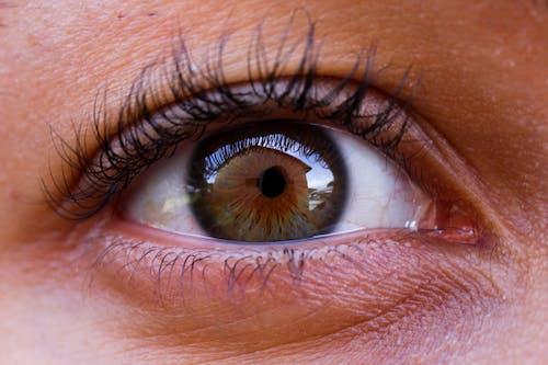 Kostnadsfri bild av öga, vackra ögon