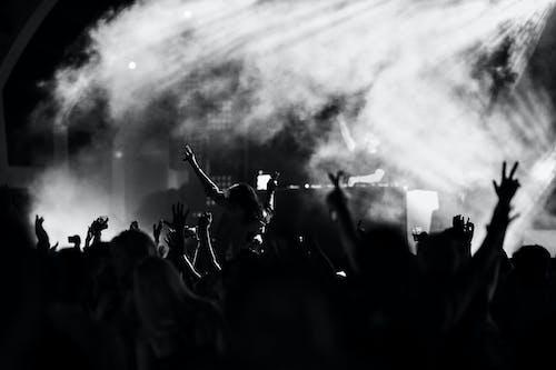 Základová fotografie zdarma na téma černobílý, dav, drinky, hudba