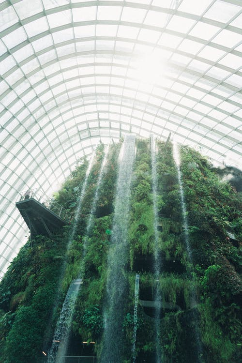 Základová fotografie zdarma na téma architektura, botanická zahrada, budova, denní světlo