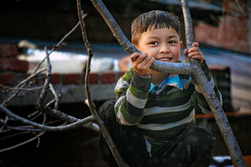 Smiling Boy Beside Bare Tree