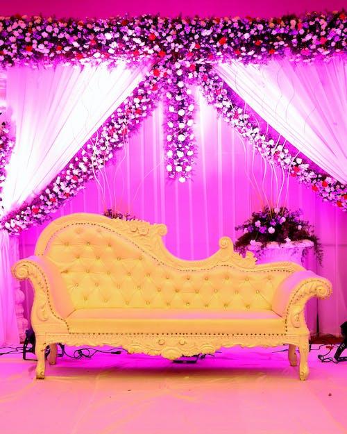 Základová fotografie zdarma na téma gauč, láska, židle