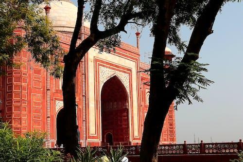 Základová fotografie zdarma na téma chrám, indie, oblouk, palác