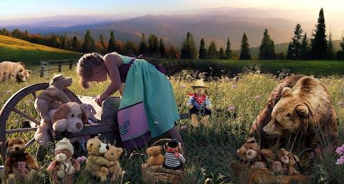 Foto profissional grátis de amor, bichos de pelúcia, bonitinho, campo de grama