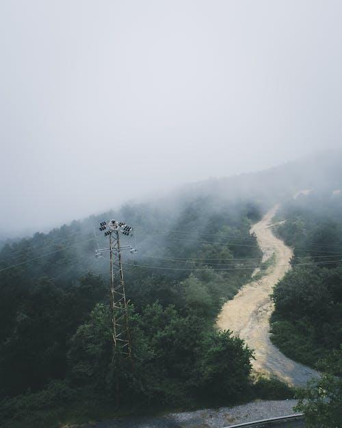 Gratis stockfoto met antenne, berg, bomen, daglicht