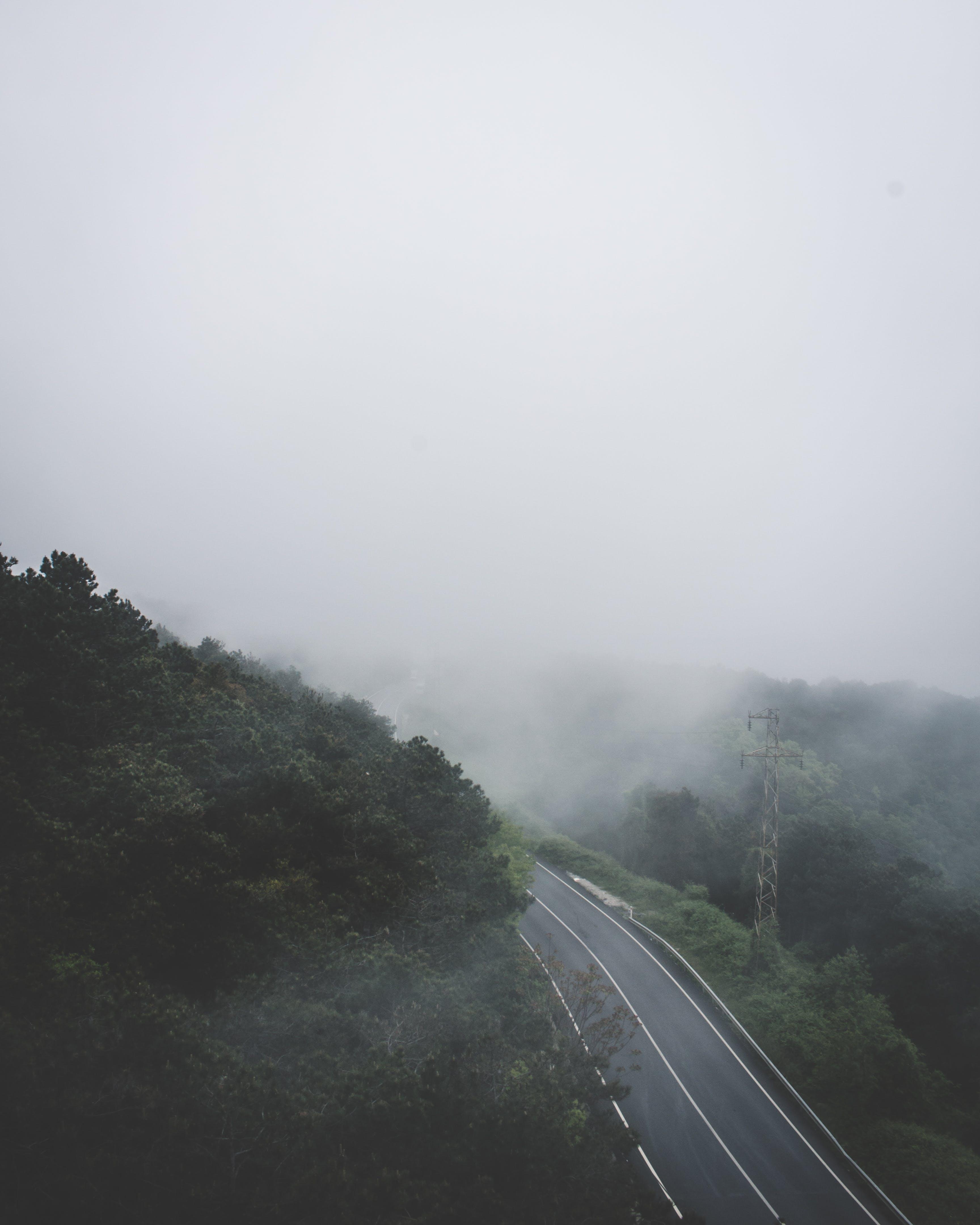 Kostenloses Stock Foto zu asphalt, ausflug), autobahn, bäume