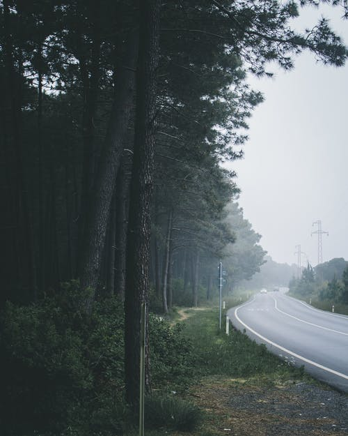 Kostnadsfri bild av asfalt, dagsljus, dimma, dimmig