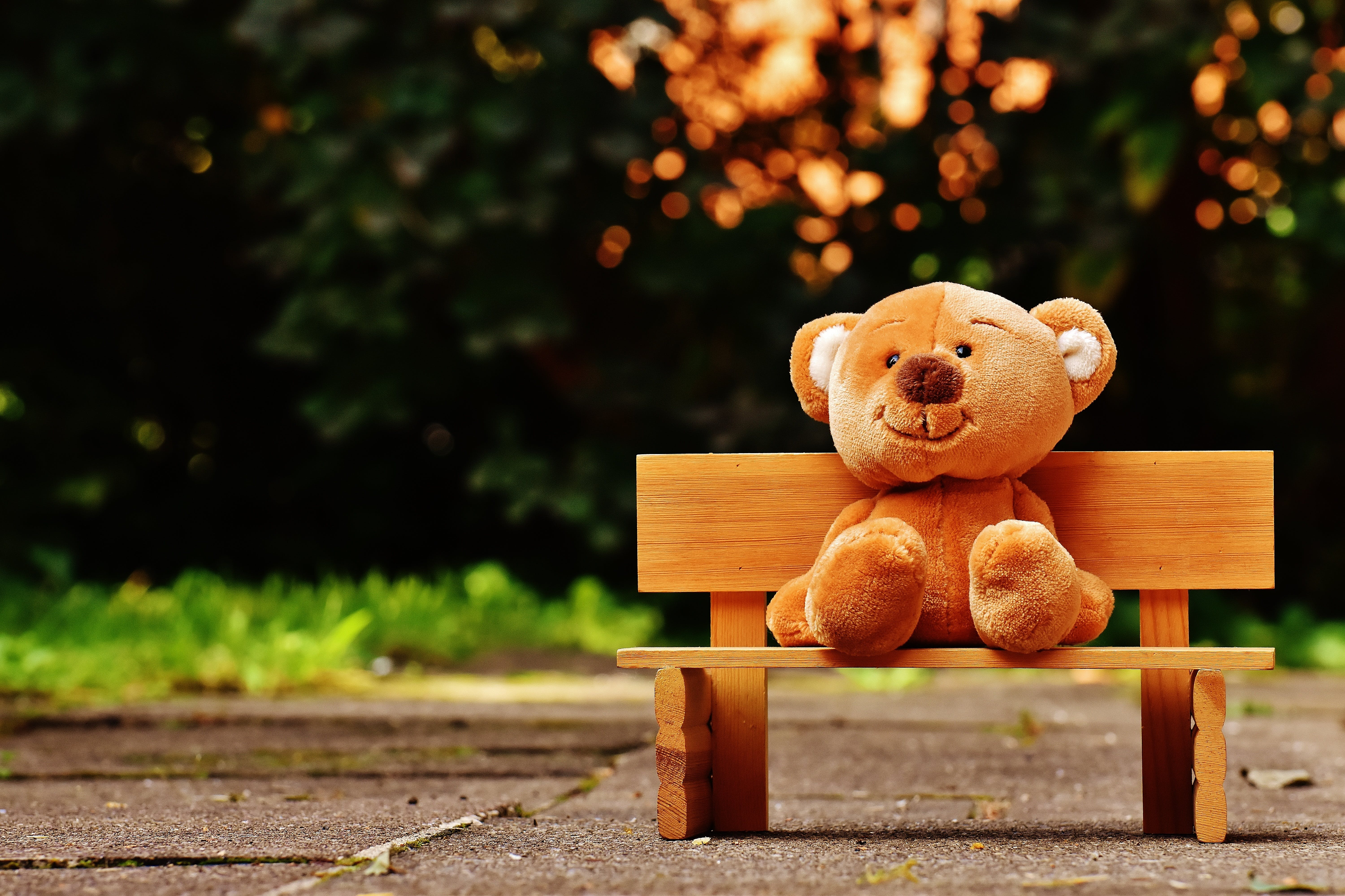 Brown Teddy Bear on Brown Wooden Bench Outside