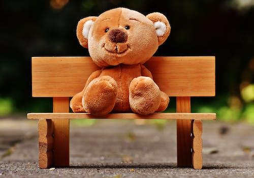 Brown Bear Plush Toy Sitting on Wooden Bench