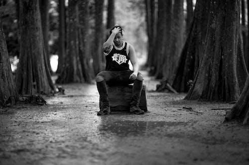 Ingyenes stockfotó divat, erdő, fák, fekete-fehér témában