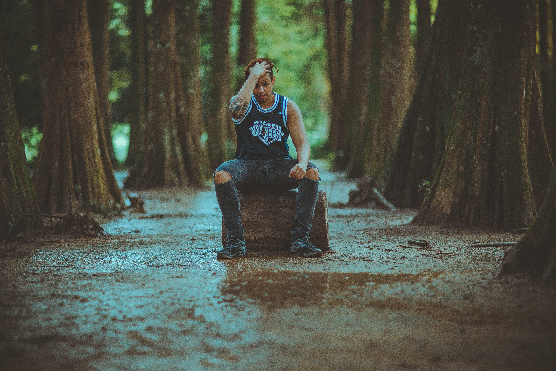 Kostenloses Stock Foto zu bäume, dressman, fotoshooting, freizeit