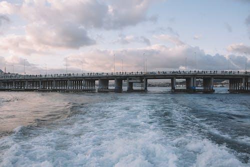 Fotobanka sbezplatnými fotkami na tému dok, dopravný systém, kývať, ľudia