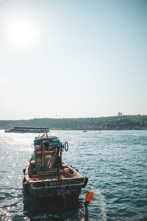 båt, dagsljus, färja