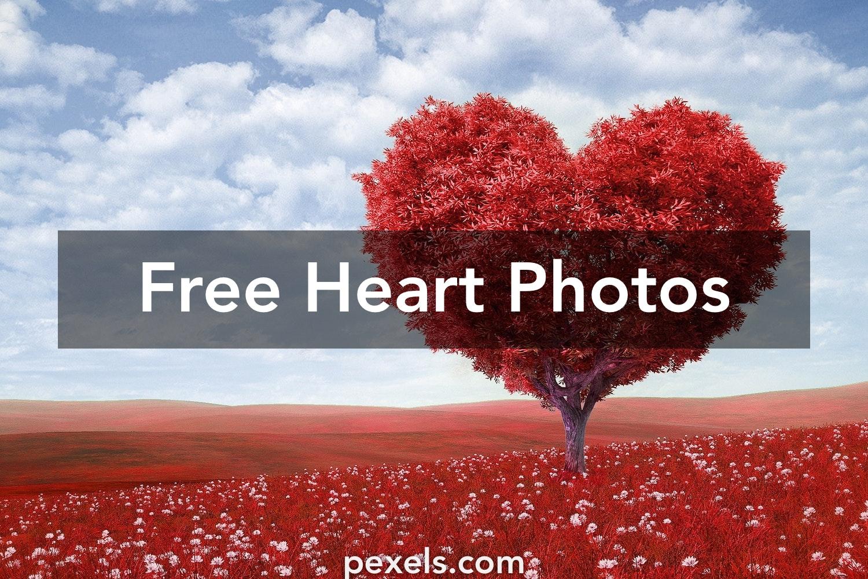 167 romantic heart pictures pexels free stock photos izmirmasajfo