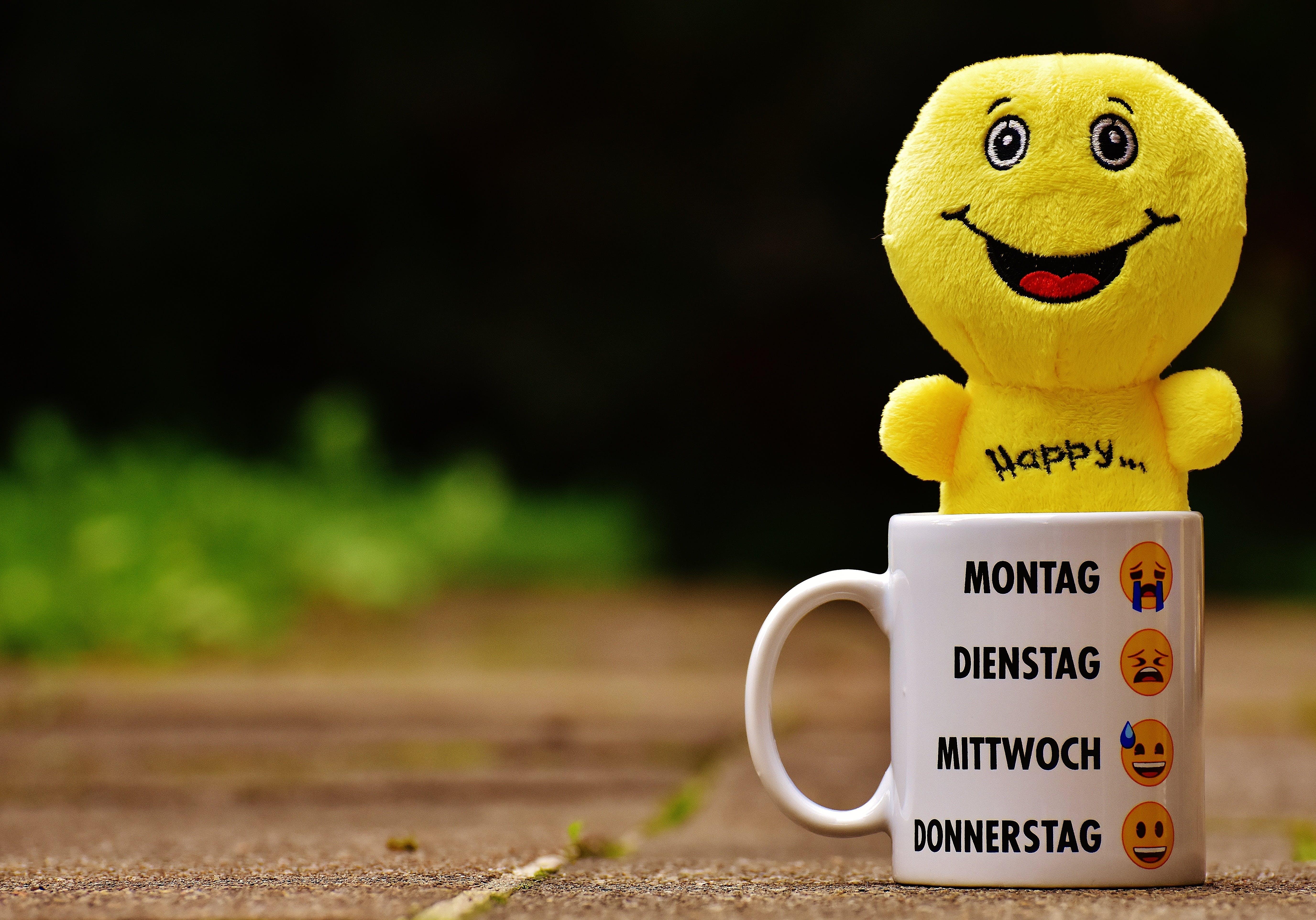 White Ceramic Mug With Yellow Plush Toy on It