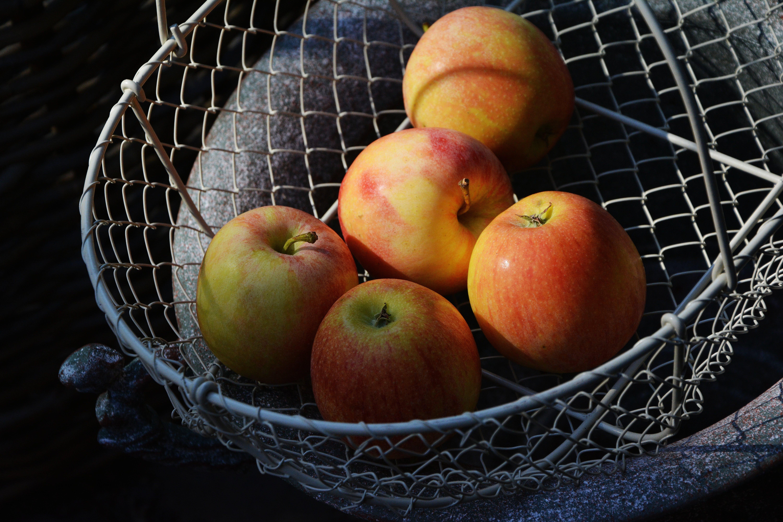 Red Apple on Gray Mesh Basket Set F 5