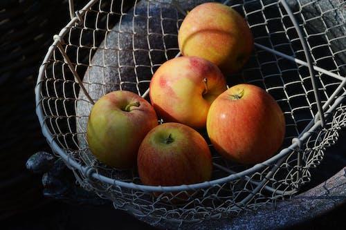 Ingyenes stockfotó almák, aratás, csendélet, diéta témában