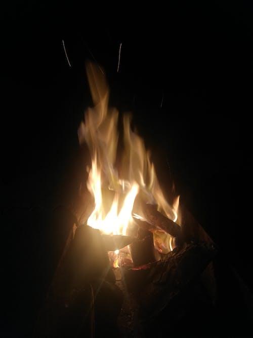 Free stock photo of barbecue, bonfire, campfi, dark night