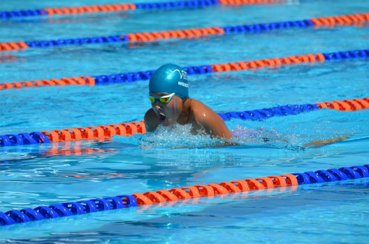 Free stock photo of sport, happy, swimming, competition