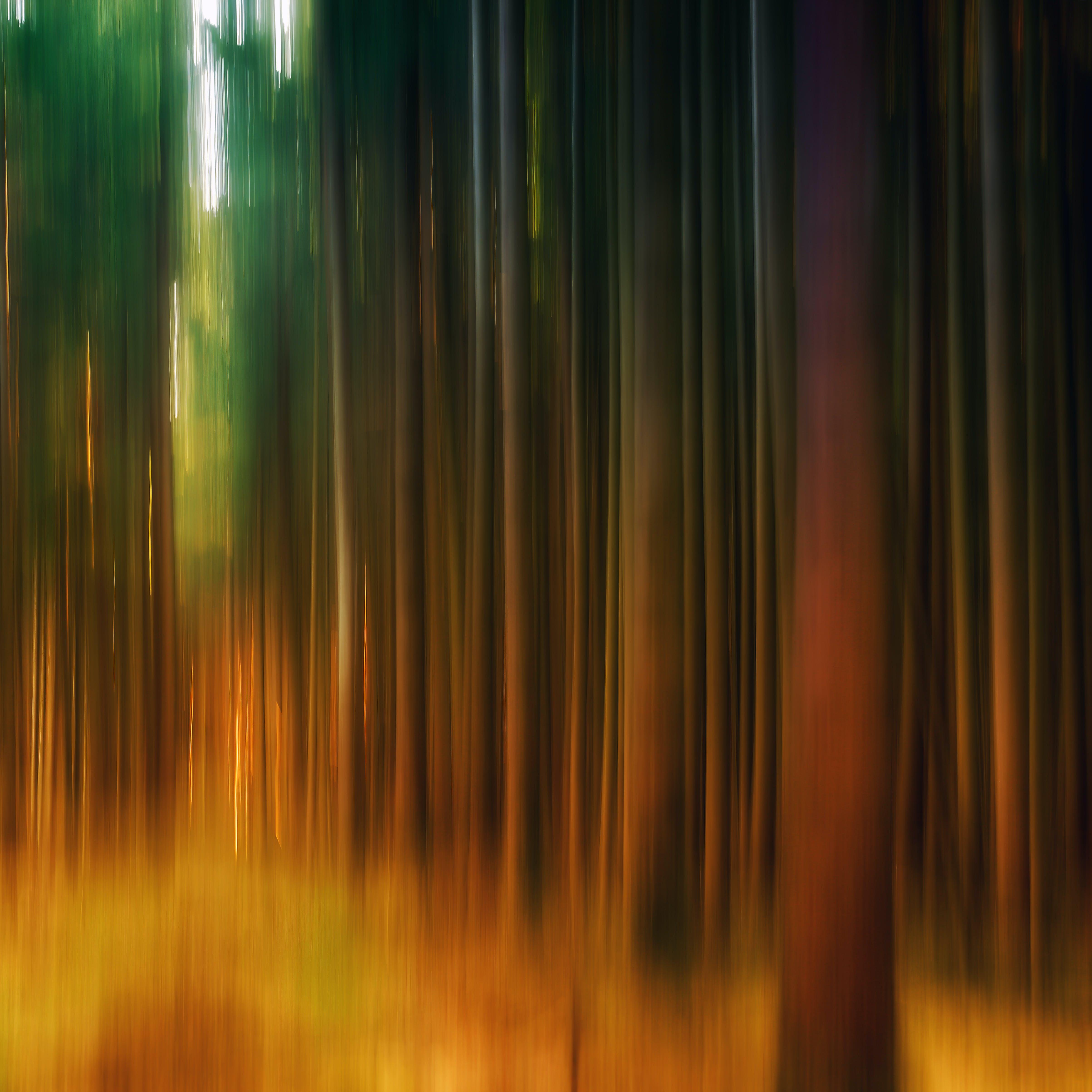 คลังภาพถ่ายฟรี ของ การทาสี, ความคิดสร้างสรรค์, ผ้าใบ, พร่ามัว