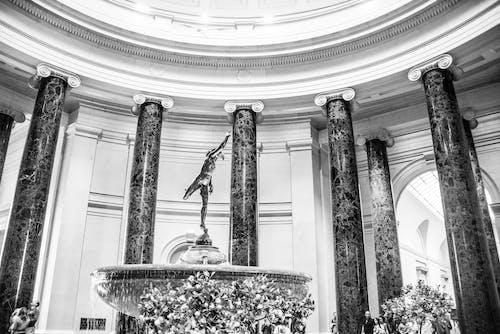 국립 박물관, 실내 동상의 무료 스톡 사진