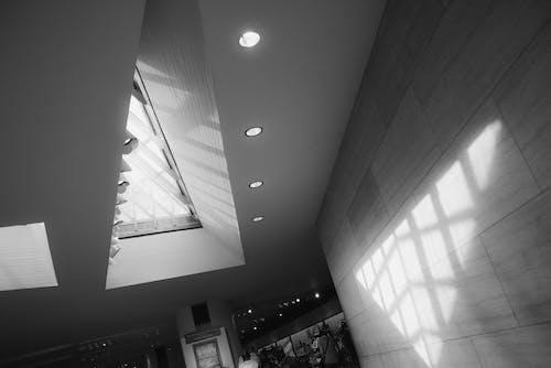 모노톤의, 빛과 그림자의 무료 스톡 사진