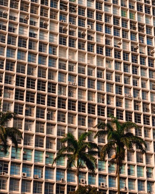 Бесплатное стоковое фото с архитектура, деревья, здание, кокосовые пальмы