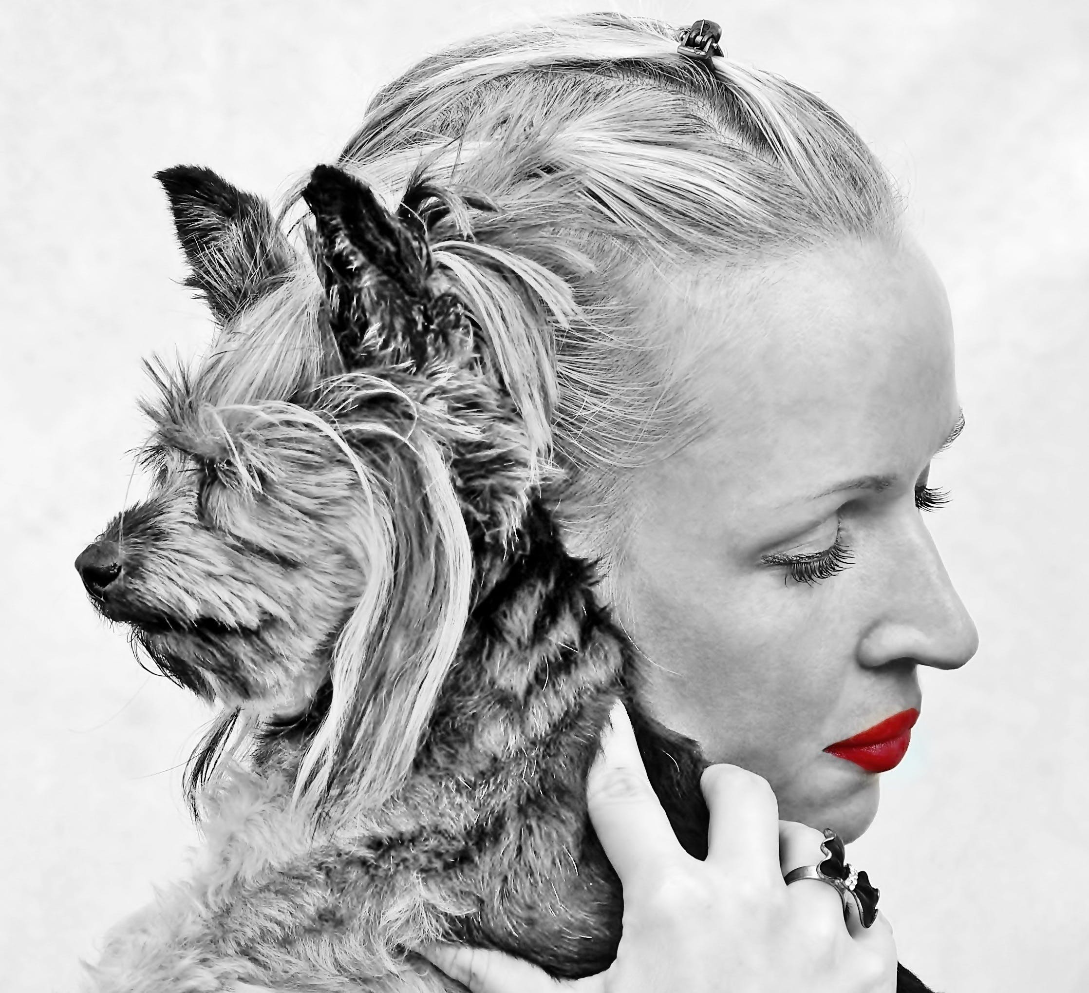 Selective Color Photography of Woman Holding Yorkshire Terrier