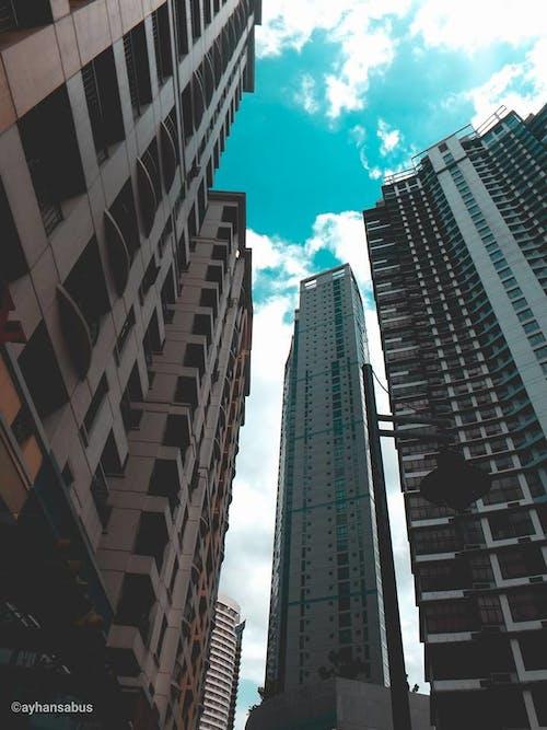 거인들, 끝, 로앵글 촬영, 문명의 무료 스톡 사진