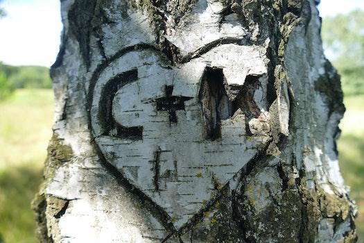 C + M Heart Embossed on Three